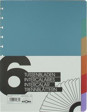 Atoma, jeu de 6 intercalaires, ft A4+, couleurs assorties