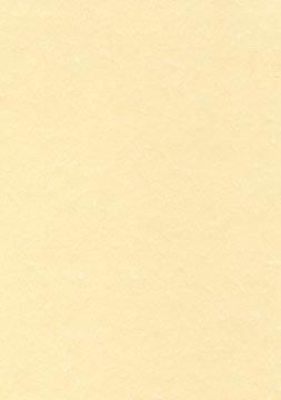 Decadry papier à structure champagne, 165 g, paquet de 50 feuilles